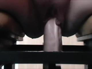 Zicken pussy fucks Monkey Rocker loud Squirting orgasmus